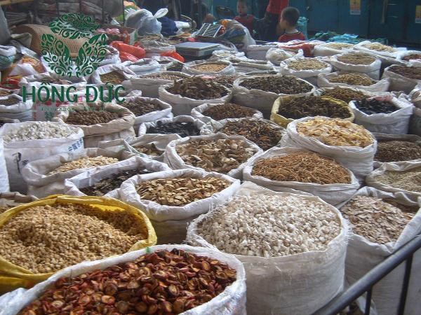 Chất lượng thuốc Đông Y tại Việt Nam là một dấu hỏi chấm lớn