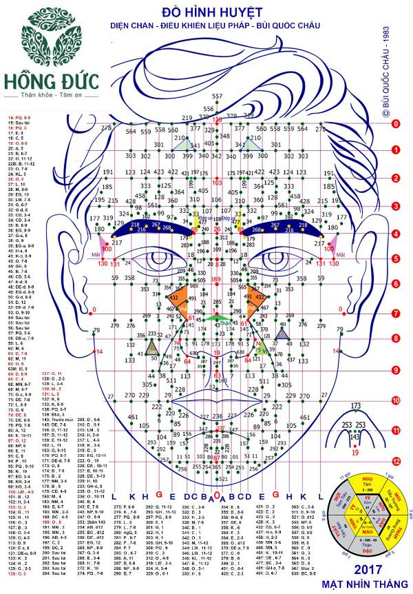 Theo diện chẩn có đến 500 huyệt trên gương mặt tương ứng các bộ phận, cơ quan trên cơ thể